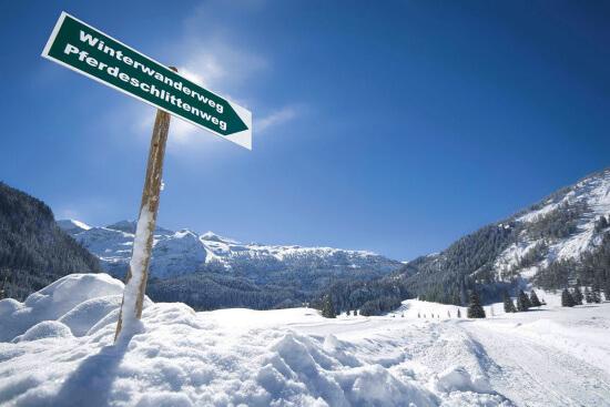 Pferdeschlittenfahrten in Obertauern, Salzburger Land