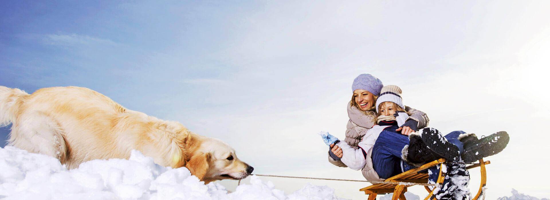 Hotel Binggl in Obertauern - Urlaub mit Hund